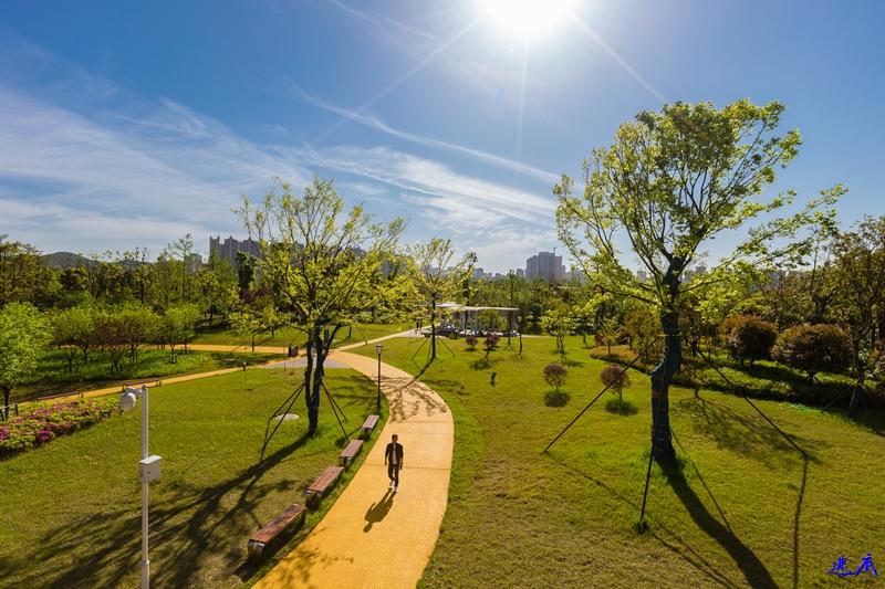 银星湾公园--14.jpg