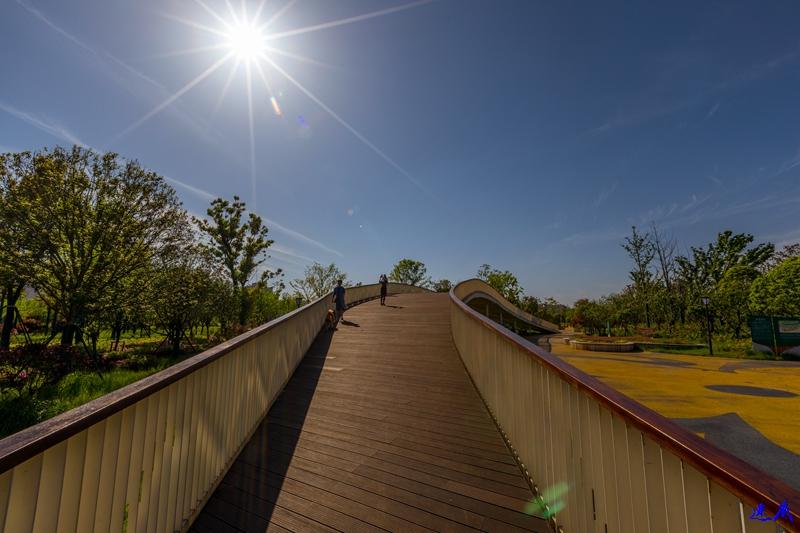银星湾公园--12.jpg