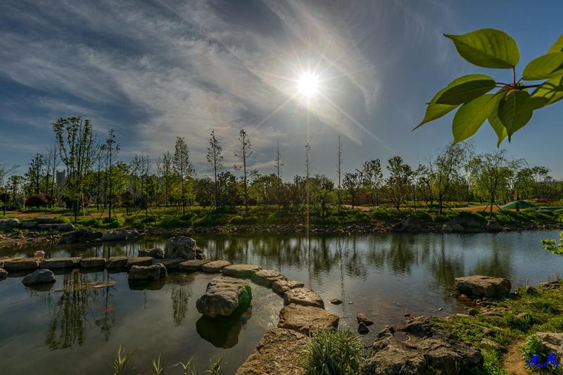 银星湾公园--58.jpg