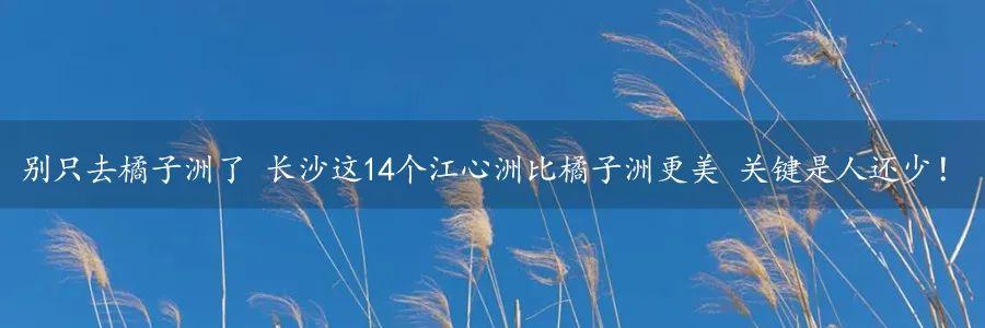 31d329634b858adac8124119a078ab96.jpg